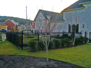 Classy Wrought Iron Fence